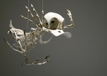 Exposição mostra os esqueletos dos personagens de desenhos animados
