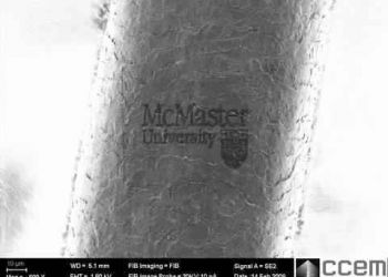 Uma marca gravada no cabelo – Nanomarca?