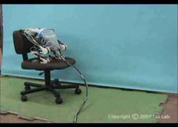 Robô Sapo Japonês