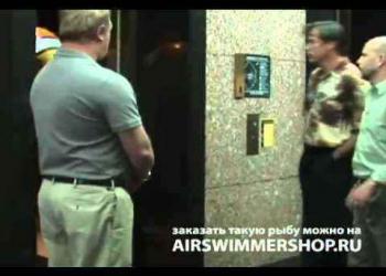 Air Swimmers – Peixes que nadam pelo ar