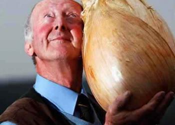 A maior cebola do mundo