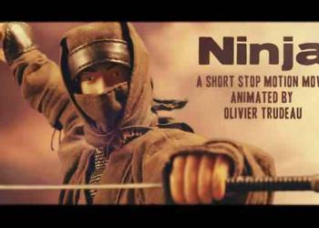 Ninjas de stop motion