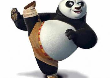 O Urso mestre no Kung Fu