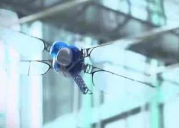 O bionicóptero – a libélula eletrônica