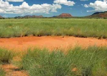 Os misteriosos círculos da Namíbia