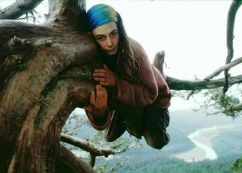 Julia Hill – A mulher que morou numa árvore