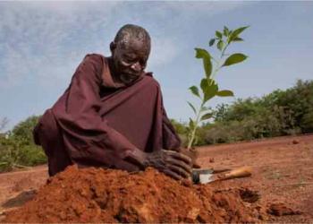 Yacouba Sawadogo  – o homem que venceu um deserto