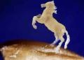 Russo esculpiu cavalo num grão de aveia