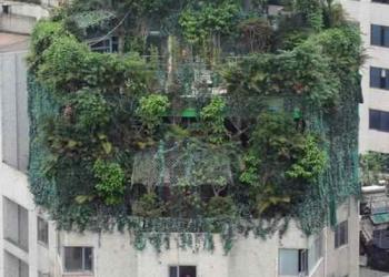 Os jardins suspensos da cobertura