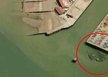 Caranguejo gigante aparece em foto aérea: Será o Kraken??
