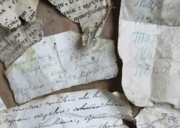 Pássaros salvaram séculos documentos antigos em seus ninhos