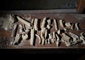 O mistério da ossada que brilha em Santo Antônio do Descoberto