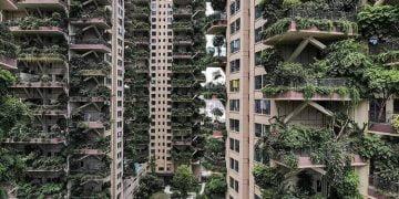 Projeto de floresta vertical urbana na China dá ruim