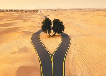 Foto gump do dia: A bifurcação no deserto