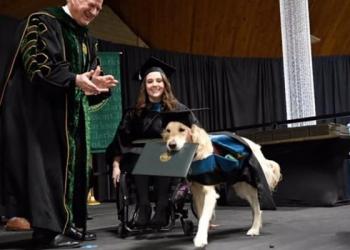 Era só o que faltava: Um cachorro com diploma de mestrado