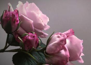 INCRÍVEL: A arte das flores feitas de açúcar