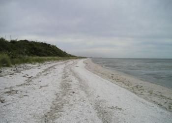 Castigo bizarro: Pais largaram a filha numa ilha deserta
