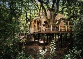 Casa na árvore sem perder a classe