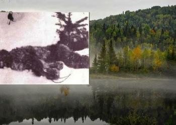 A fotografia mais antiga de um yeti morto